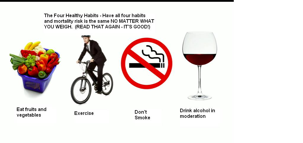Aamodt's picture of healthy habits